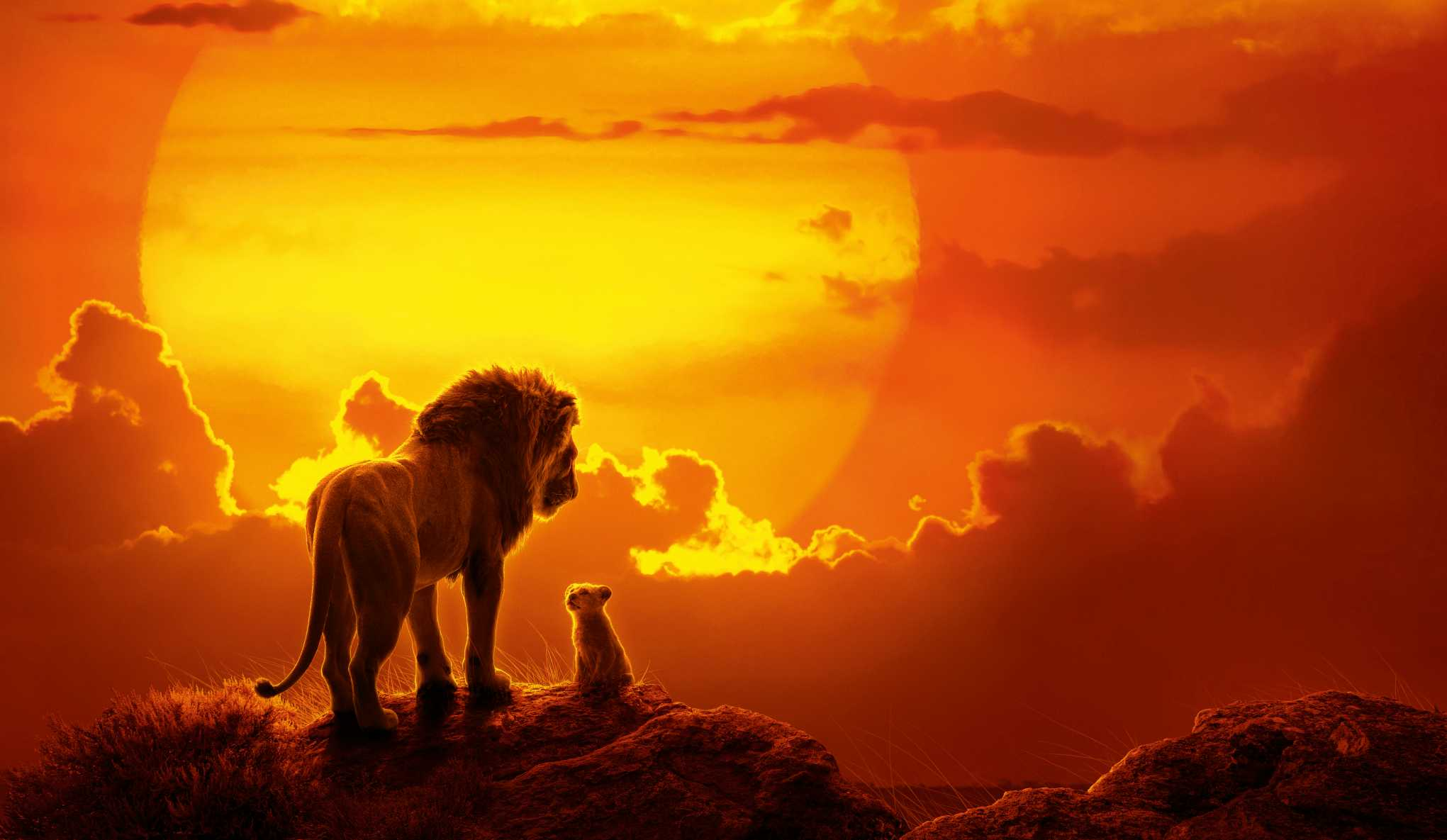 The Lion King Movie 8k