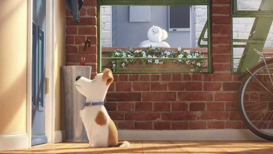 The Secrete Life Of Pets Movie Main Character
